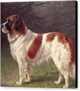 Saint Bernard Canvas Print by Heinrich Sperling