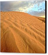 Sand Dune At Great Sand Hills In Scenic Saskatchewan Canvas Print by Mark Duffy