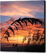 Sanibel Island Sunset Canvas Print by Nick Flavin