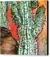 Saquaros Canvas Print by Mindy Newman