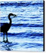 Seafood Deli Canvas Print by Barbara  White