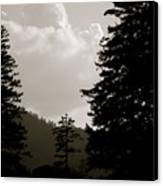 See The Mountain Through The Trees Canvas Print by Kimberly Camacho