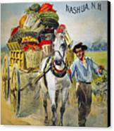 Seed Company Poster, C1880 Canvas Print by Granger