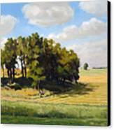 September Summer Canvas Print by Bruce Morrison