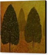 September Trees  Canvas Print by David Dehner