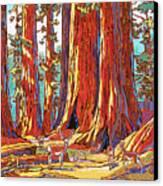 Sequoia Deer Canvas Print by Nadi Spencer