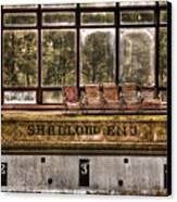 Shallow End Canvas Print by Evelina Kremsdorf