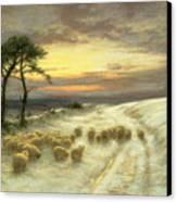 Sheep In The Snow Canvas Print by Joseph Farquharson