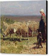 Shepherdess Canvas Print by Anton Mauve