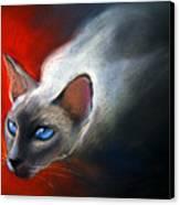 Siamese Cat 7 Painting Canvas Print by Svetlana Novikova