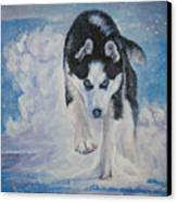 Siberian Husky Run Canvas Print by Lee Ann Shepard