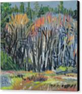 Signs Of Spring Canvas Print by Donald Maier
