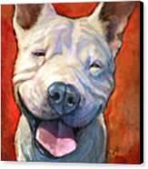 Smile Canvas Print by Sean ODaniels