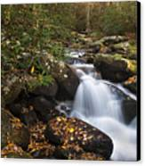 Smokies Stream In Autumn Canvas Print by Andrew Soundarajan