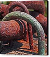 Snaking Rust  Canvas Print by Rona Black