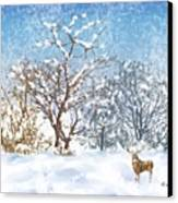 Snow Flurry Canvas Print by Arline Wagner