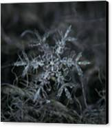Snowflake 2 Of 19 March 2013 Canvas Print by Alexey Kljatov