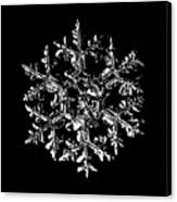 Snowflake Vector - Gardener's Dream Black Version Canvas Print by Alexey Kljatov