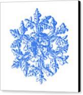 Snowflake Vector - Gardener's Dream White Version Canvas Print by Alexey Kljatov