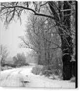 Snowy Branch Over Country Road - Black And White Canvas Print by Carol Groenen
