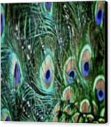 Someone Is Watching You Canvas Print by Odd Jeppesen