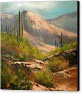 Southwest Beauty Canvas Print by Robert Carver