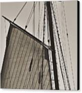 Spirit Of South Carolina Schooner Sailboat Sail Canvas Print by Dustin K Ryan