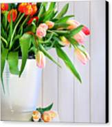 Spring Tulips On An Old Bench Canvas Print by Sandra Cunningham