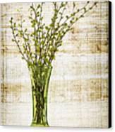 Spring Vase Canvas Print by Elena Elisseeva