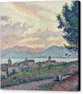 St Tropez Pinewood Canvas Print by Paul Signac
