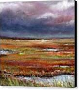 Storm Coming Canvas Print by Peter R Davidson