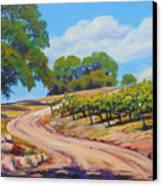 Summer Walk Canvas Print by Margaret  Plumb