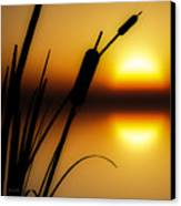 Summertime Whispers  Canvas Print by Bob Orsillo