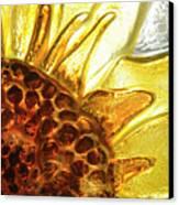 Sunburst Sunflower Canvas Print by Jerry McElroy