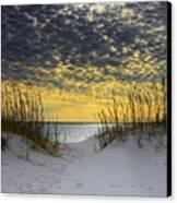 Sunlit Passage Canvas Print by Janet Fikar