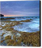 Sunrise Beneath The Storm Canvas Print by Mike  Dawson