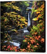 Surrounded By Fall Canvas Print by Neil Shapiro