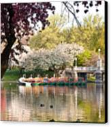 Swan Boats With Apple Blossoms Canvas Print by Susan Cole Kelly