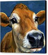 Sweet Jersey Cow Canvas Print by Dottie Dracos