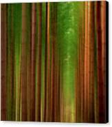 Tall Trees Canvas Print by Svetlana Sewell