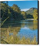 Texas Hill Country - The Frio River Canvas Print by Andre Babiak