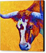 Texas Longhorn Cow Study Canvas Print by Marion Rose