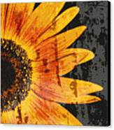 Textured Sunflower Canvas Print by Cathie Tyler