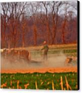 The Amish Way Canvas Print by Scott Mahon