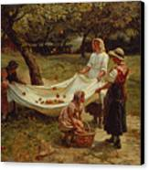 The Apple Gatherers Canvas Print by Frederick Morgan