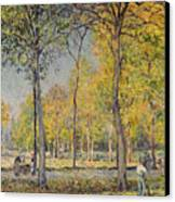 The Bois De Boulogne Canvas Print by Alfred Sisley