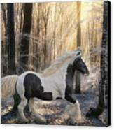 The Crystal Morning Canvas Print by Terry Kirkland Cook