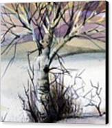 The Lone Tree Canvas Print by Mindy Newman
