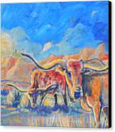 The Longhorns Canvas Print by Jenn Cunningham