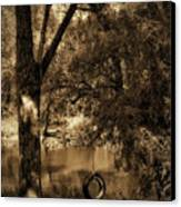 The Old Tire Swing Canvas Print by Bill Cannon